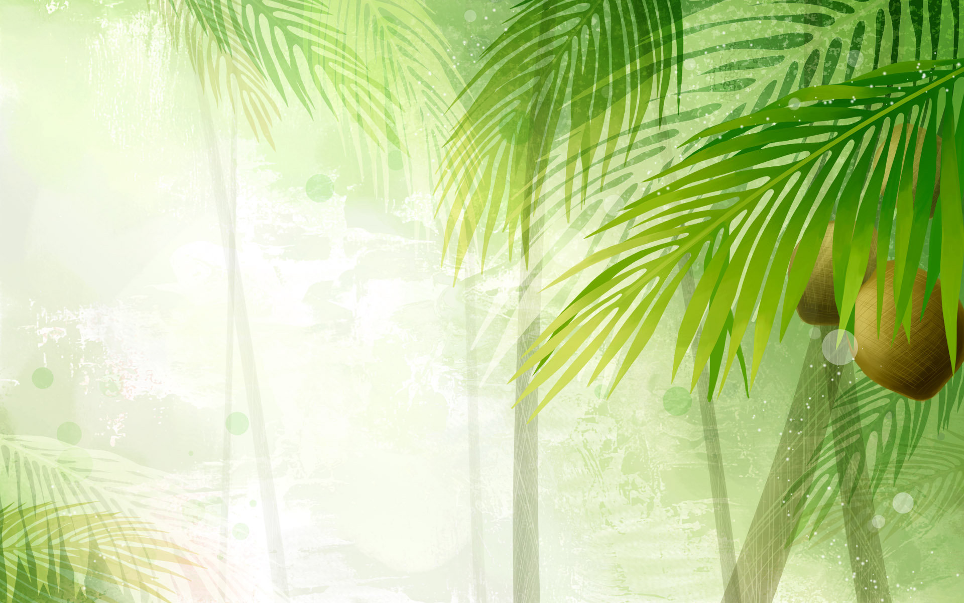 Pics Photos - Coconut Tree Free Wallpaper Download Pictures